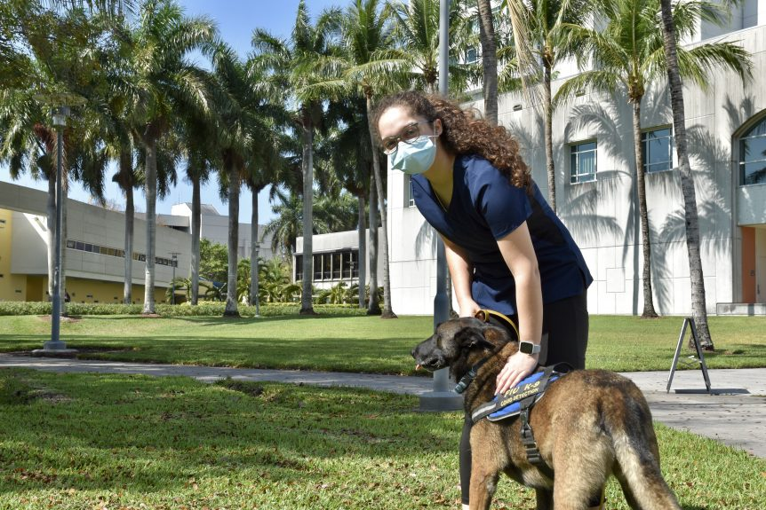 Erica Garcia with COVID detector dog on campus.